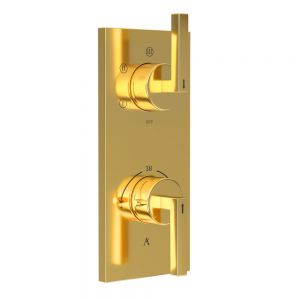 In-wall Thermostatic Shower Valve with 5-Way Diverter-Full Gold