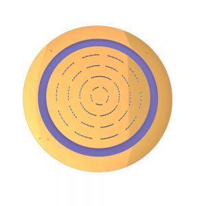 Maze Prime Round Shape Single Function Shower-Full Gold