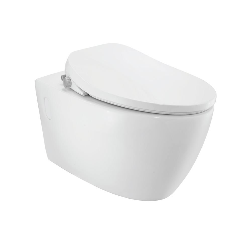 Bidspa Rimless Wall Hung WC