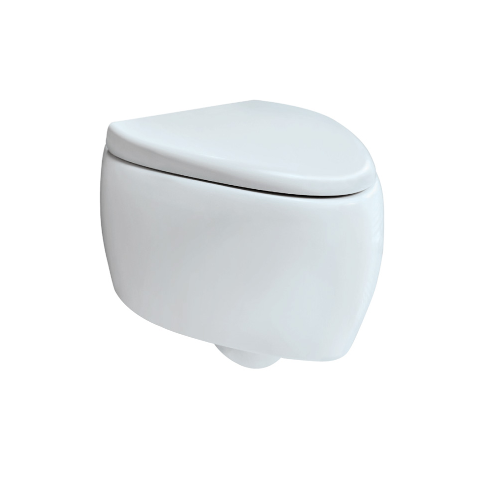 Wall Hung WC