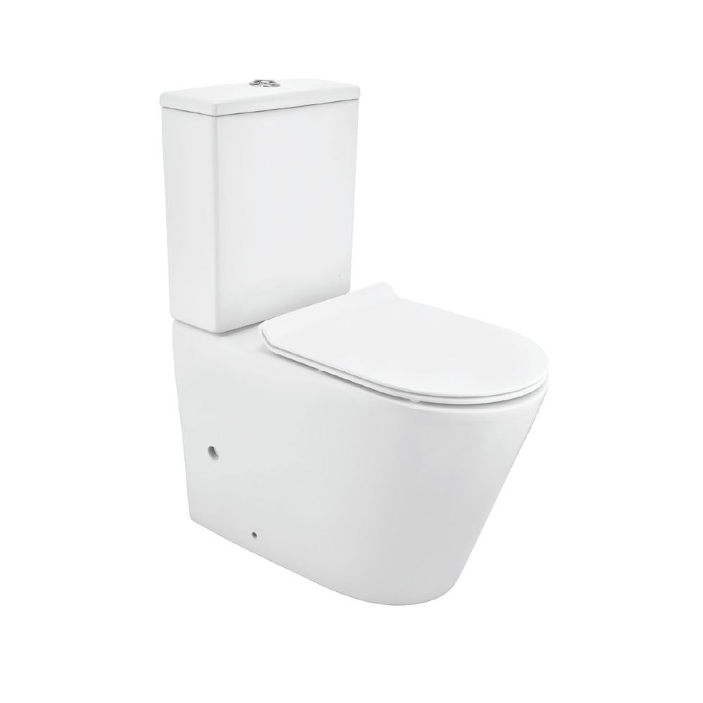 Rimless Bowl For Coupled WC