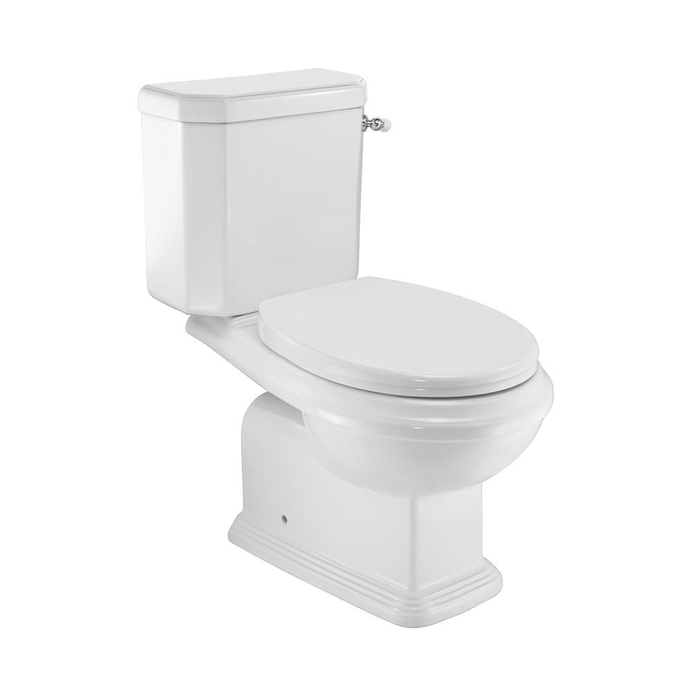Rimless Bowl with Side Flush Cistern